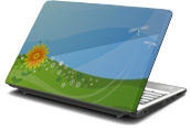 Dragonfly Spring Laptop Skin